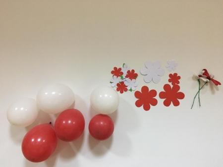 Rocznica obchodów rocznicy odzyskania Niepodległości